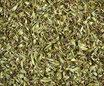 Serpolet - Plante entière / Quendel - ganze Pflanze