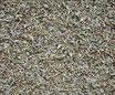 Thym - Feuilles / Thymian - Blätter