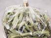 Verveine - Verbene - Eisenkraut  25 g Zellglasbeutel
