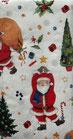 217   PT915400 Santas Look