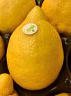 """Bio Zitronen """"unbehandelt"""" """"IT"""""""