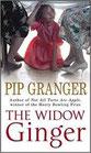 The Window Ginger by Pip Granger