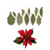 Set cortante Flor de Navidad (Poinsettia) JEM