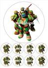 Tortugas Ninja 01