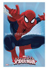 Spiderman 09