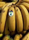 Plátano Eco