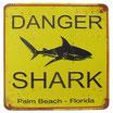 Danger - Shark