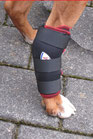 TSM vet-Pro Reha-Bandage für das Hinterbein ohne Schiene, 7530