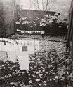 Wäsche im Hinterhof, Schönhauser Allee, 1972