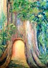 Das Lichtbaumversteck (Poster)