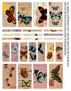 Transfer Bogen - Schmetterlinge