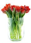 personalisierte Vase & Windlicht Familie