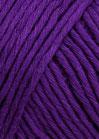 violett-dunk