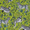 Protea Lime Wp