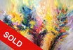 Experience XL1 SOLD