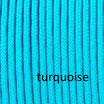 turquoise pp