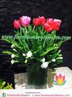 Tulipán GLASS TP109
