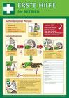 Erste Hilfe DIN A3 Plakat + AED