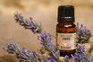 Aceite esencial de Lavanda - 10ml