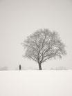 A Winter Walk - Art Print