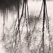 """""""Reflection Downpour"""" Art Print"""