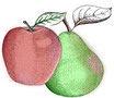 Apfel-Birnensaft (5l)