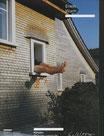Wurm (Erwin Wurm - Künstler. Kritisches Lexikon zur Gegenwartskunst. Ausgabe 51, Heft 23) 2000.