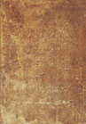 Katalog Nr. 56 (2006) Ludwig Sterners Handschrift der Burgunderkriegschronik des Peter von Molsheim und der Schwabenkriegschronik des Johannes von Lenz