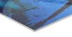 HD METAL PRINT 60x80 cm