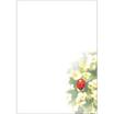 Briefpapier – «Der kleine Glücksbote»