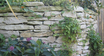 Exclusive free dry stone wall workshop 25+26.9.21