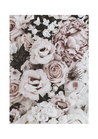 POSTER / PHOTO VINTAGE ROSES