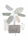POSTER / GEO PLANT