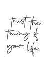POSTER / TRUST QUOTE