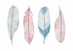 POSTER / PASTEL FEATHERS
