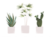 POSTER / PLANTS QUER