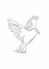 POSTER / ONELINE BIRD
