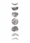 POSTER / MOON PHASES