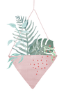 POSTER / HANGING PLANT NO.1