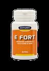 E Fort - Syform