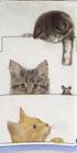 201  *5-11970M KITTIES BY BOB BOWDIGE