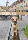 Postkarte FR 2Drittel Hund