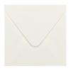 Envelop biotop 14x14 cm