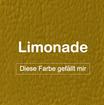"""MK-EXKLUSIVE orthopädische visco Hundematratze in """"Kunstleder-Limonade"""""""