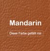 """MK-EXKLUSIVE orthopädische visco Hundematratze in """"Kunstleder-Mandarin"""""""