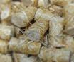 natürliche Feueranzünder, für Kaminofen, Kachelofen, Grill