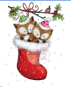 Foxes in Stocking Cl 499