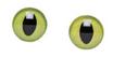 Occhi per pupazzi 14mm Verdi Cod 743-421