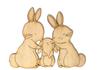 Famiglia Coniglietti Cod. SCL59B