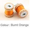 Ephemera Burnt Orange 625